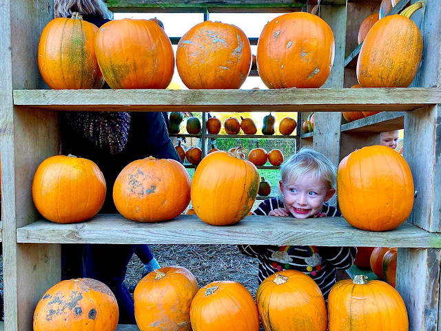 Shelves of Thursford Pumpkin House with pumpkins on and a smiling face