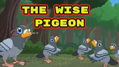 The Wise Pigeon English story