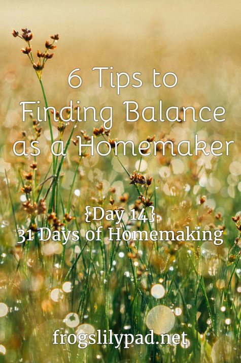 As homemaker we have to find balance in our lives. 6 Tips to Finding Balance as a Homemaker {Day 14} 31 Days of Homemaking Series. frogslilypad.net