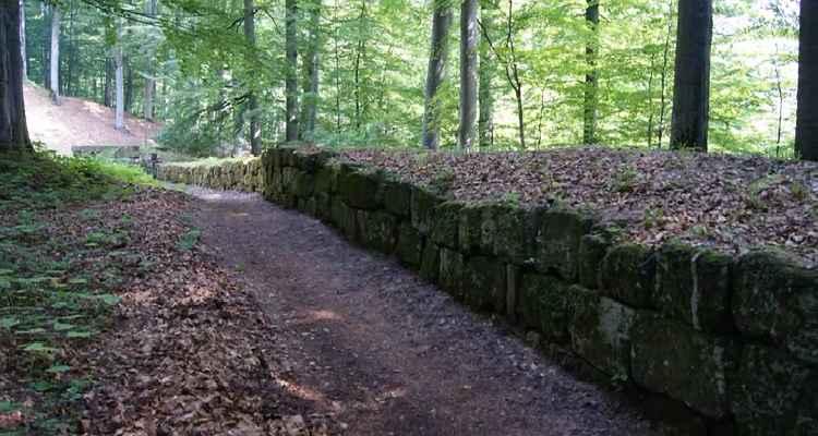 Intrare la cetatea Sarmizegetusa Regia