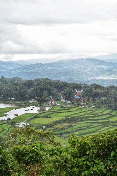 Batutumonga Toraja Utara