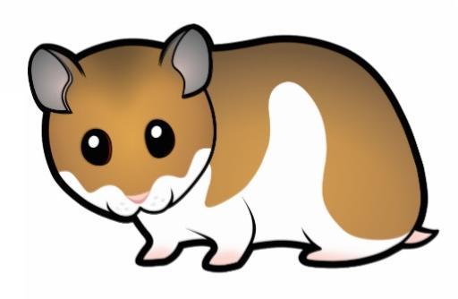 Dibujos Infantiles Para Colorear De Hamsters: Hamster Dibujo A Color