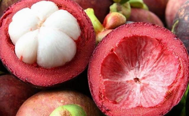 Indonesia merupakan negara tropis yang kaya akan banyak sekali jenis tumbuhan dan juga buah Manfaat Kulit Manggis Untuk Kecantikan (Masker Kulit Manggis)