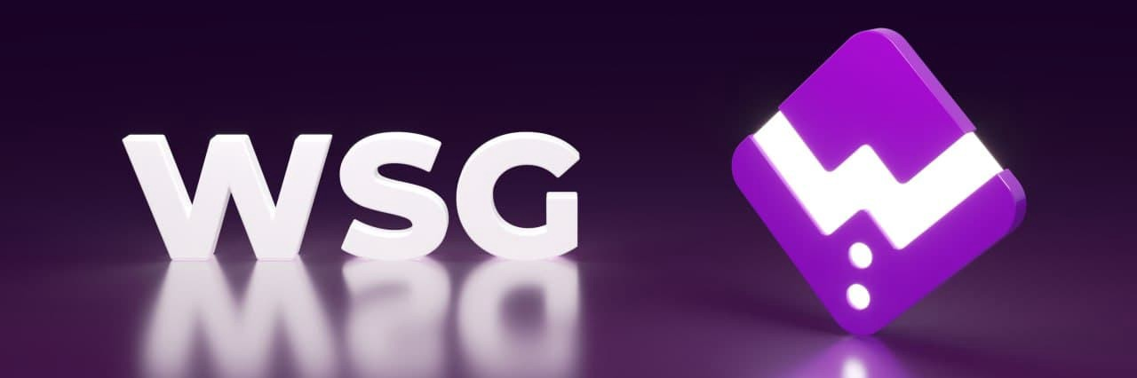 WSG Token Nedir