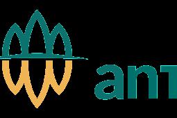 Download Logo Antam Terbaru Vektor AI