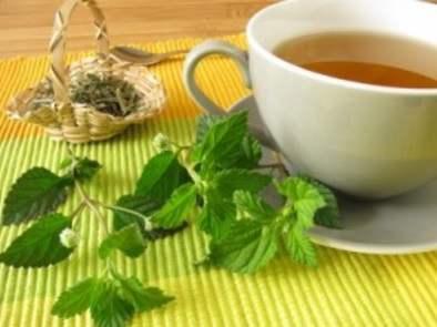 Para bajar de peso con plantas medicinales