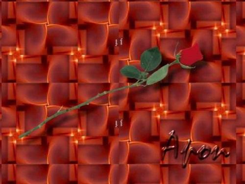 Ilustração oficial do blog - Uma rosa vermelha na diagonal, sobre um fractal do por do sol, com o nome Apon em relevo, na parte inferior da imagem. #PraCegoVer