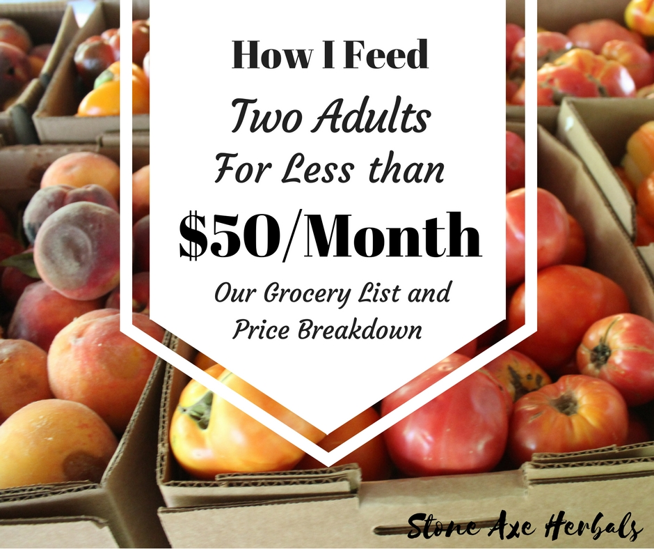 Our Grocery List How I Feed Two Adults for Less Than $50/Month!