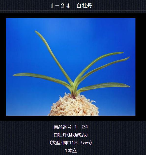 http://www.fuuran.jp/1-24.html