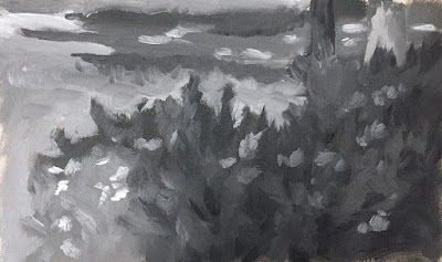 value study in front yard Jun 20 2019