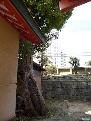神津神社拝殿裏