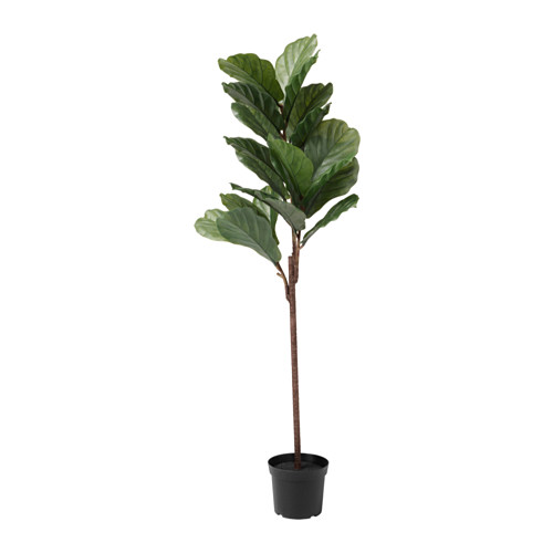 faux fiddle leaf fig, ikea artificial plants, fiddle leaf fig