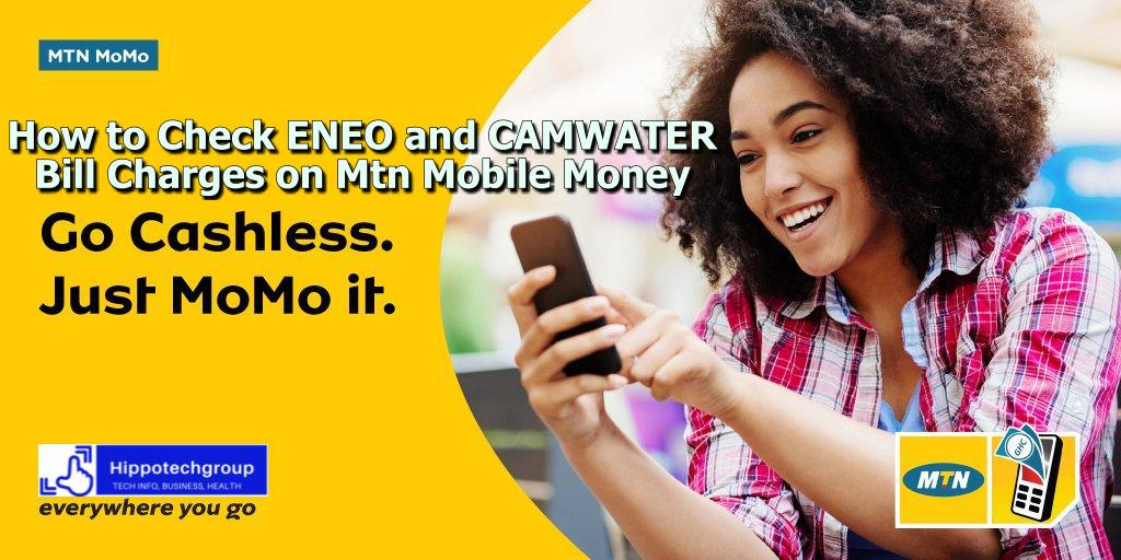 Mtn Cameroon Bill Payments with Mobile Money