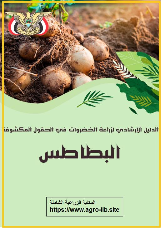 كتاب : الدليل الارشادي لزراعة البطاطس في الحقول المكشوفة