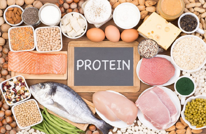 The Proteins | Healthy Tips for you