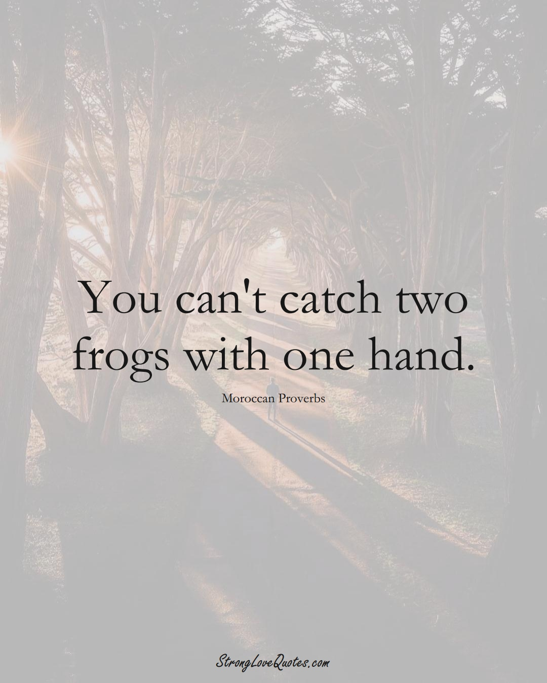 You can't catch two frogs with one hand. (Moroccan Sayings);  #AfricanSayings