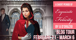 Blog Tour: A Short Period of Exquisite Felicity by Amy D'Orazio