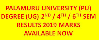 Manabadi PU Degree Sem Results 2019 2nd 4th 6th sem Results available now @ palamuruuniversity.com 1