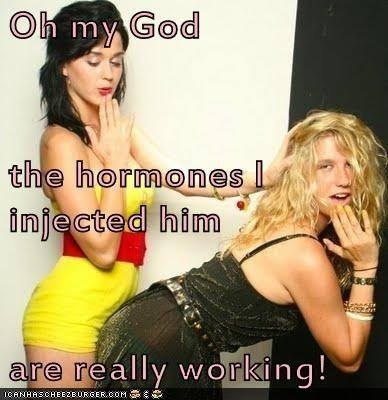 The Hormones are Working Sissy TG Caption - Hard TG Caps - Crossdressing and Sissy Tales and Captioned images