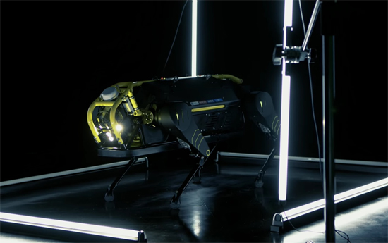 HyQReal Robot