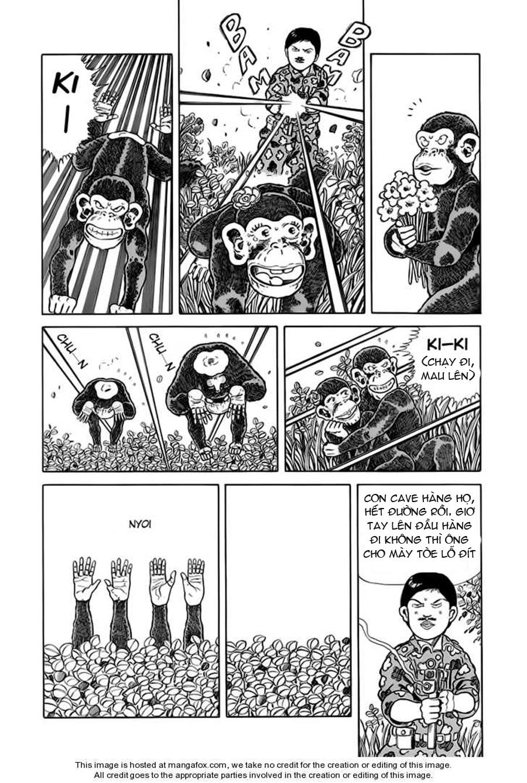 Chúa rừng Ta-chan chapter 30 trang 7