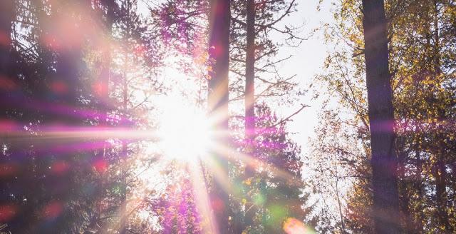 soleil vitamine D musculation fitness santé