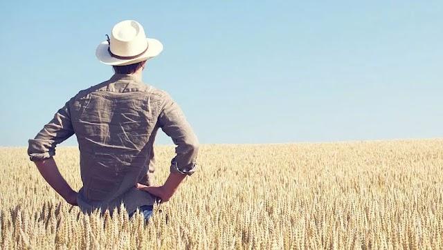 Avanço na recuperação judicial do produtor rural