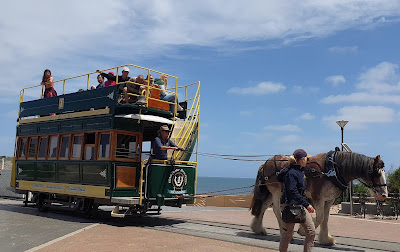 Victor Harbor Granite Island Horse Drawn Tram