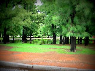 Alagamento entre As Árvores do Rosedal, em Buenos Aires