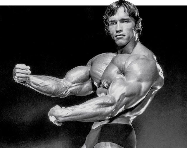 Master or Guide in Bodybuilding
