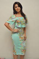 Nikki Galrani in Cute Dress Dress At Marakathamani Success Meet ~  Exclusive 011.JPG