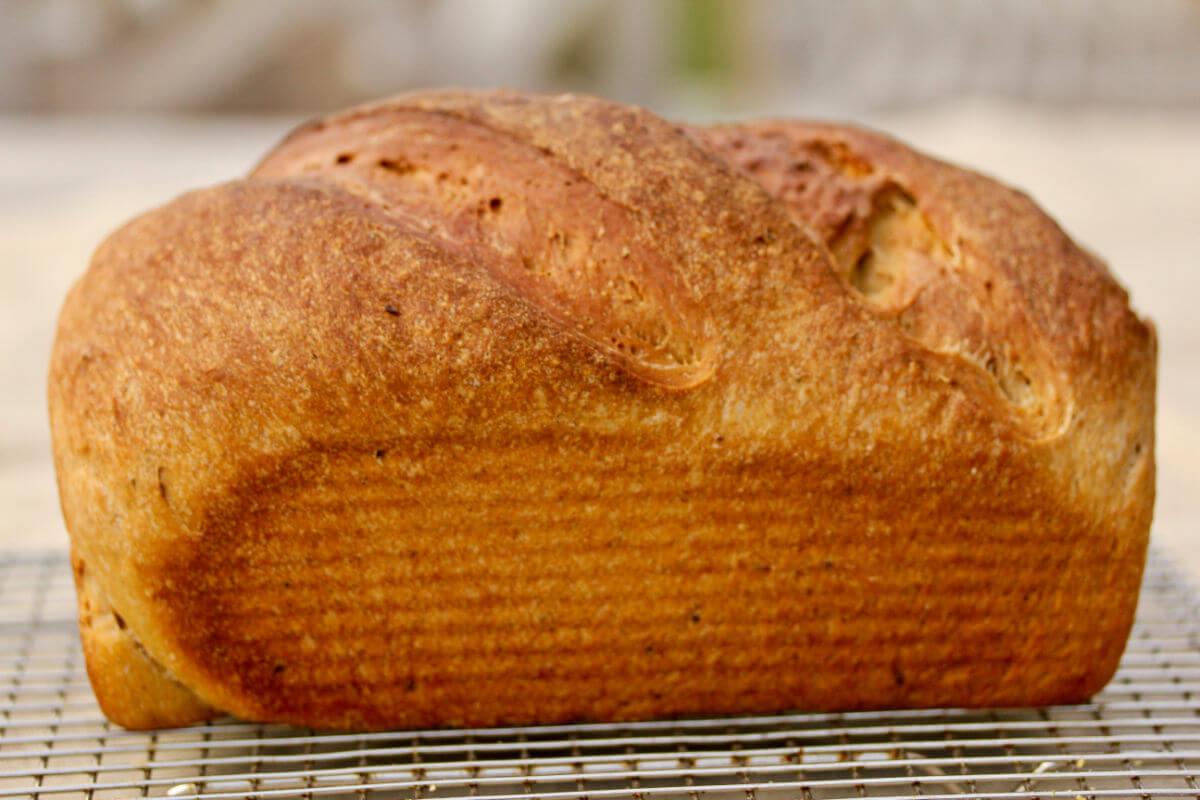 Swedish rye loaf.