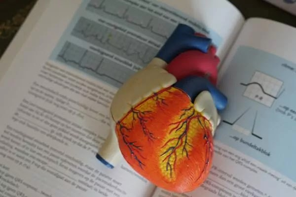 Top 10 Tips For Better Heart Health
