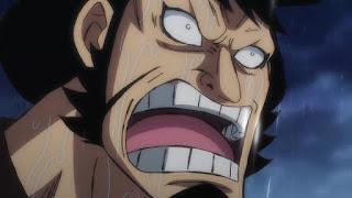 ワンピースアニメ   錦えもん KINEMON   赤鞘九人男   ONE PIECE Nine Red Scabbards   Hello Anime !