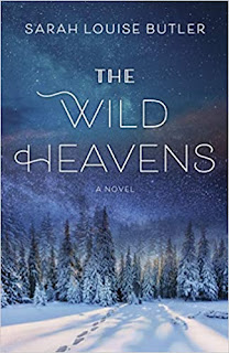 Cover of The Wild Heavens, part of Zazie Todd's Summer Reading list