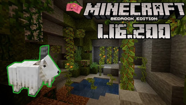 Minecraft - 1.16.200 (Bedrock)