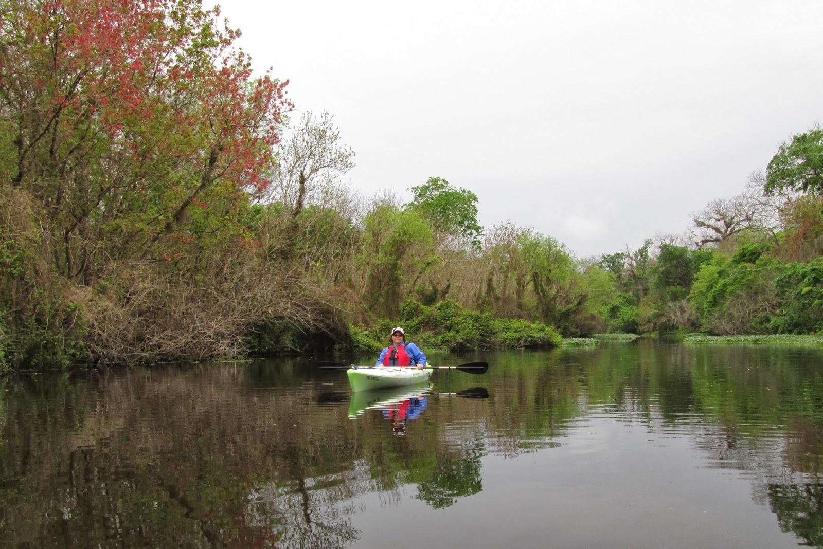 Kayak Tours Ocala Fl