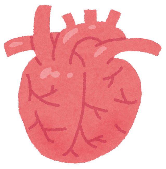 「心臓 フリー素材」の画像検索結果