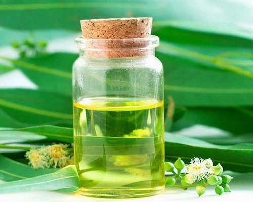कैस्टर ऑयल यानि कि अरंडी का तेल एंटी-ऑक्सीडेंट्स से भरपूर होते हैं।