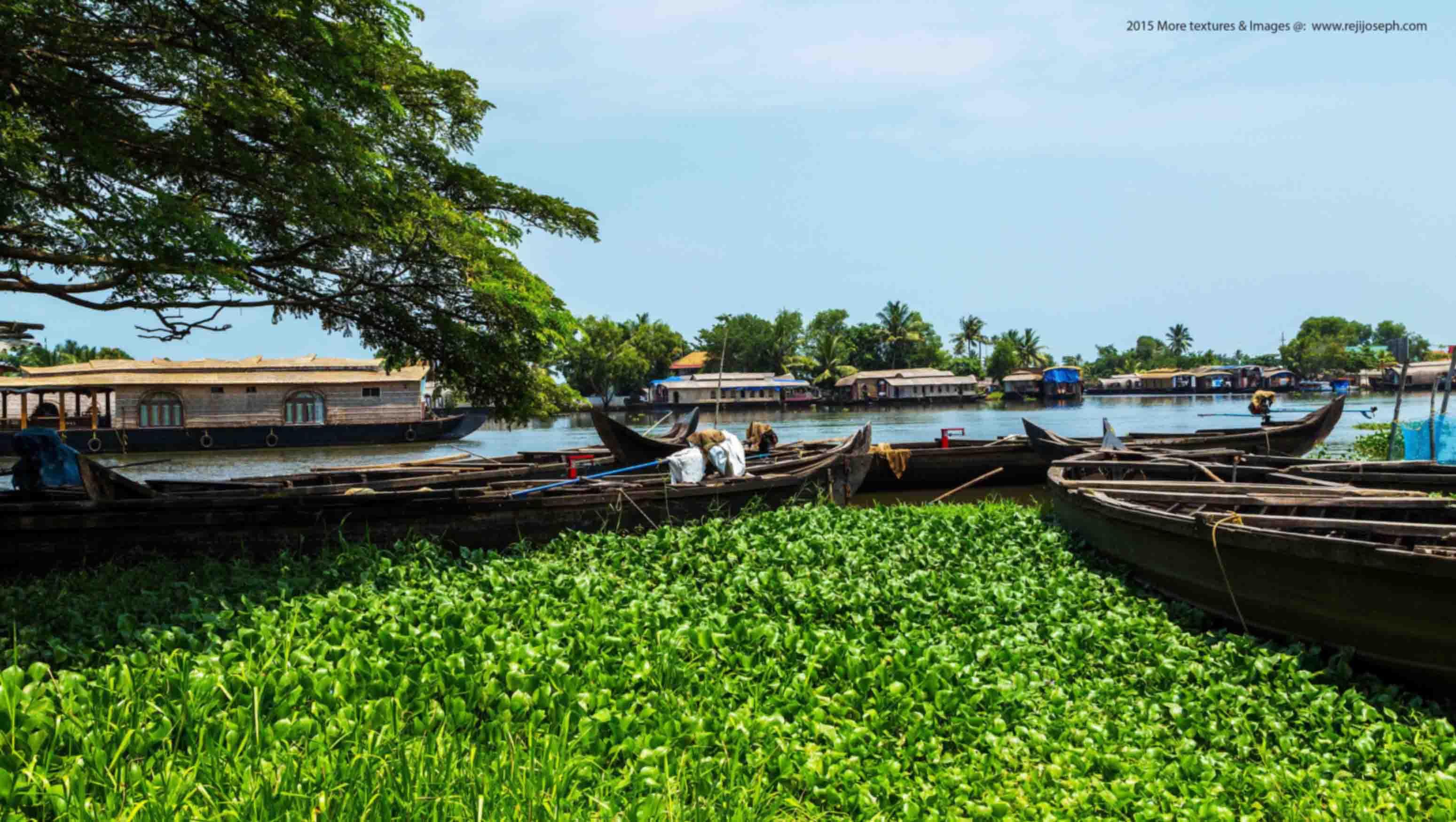 House boat Kerala 00002