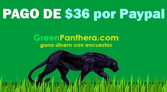 Greenpanthera-paga-2021