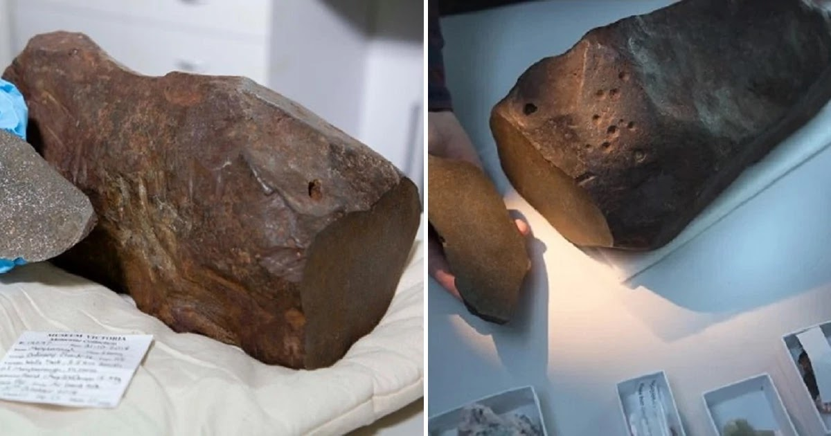 Man Kept A Rock For Years Thinking It Was Gold, But It Was Something Even More Valuable