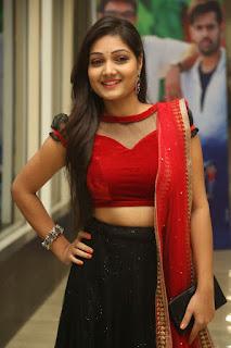 Priyanka Stills (39).jpg