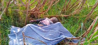 गन्ना के खेत में 7 वर्षीय बच्ची की मिली शव इलाके में फैली सनसनी