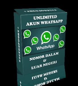 unlimited whatsapp