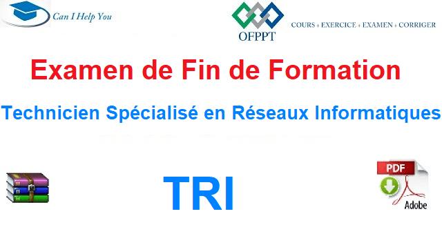 Examen de Fin de Formation Technicien Spécialisé en Réseaux Informatiques .
