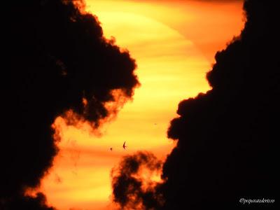 Sunrise plaja Constanta zoom cu Nikon,
