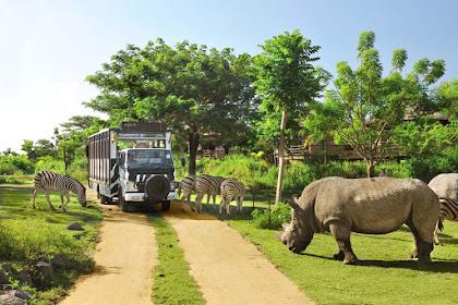 Bali Safari Park Tiket Masuk Bali Safari
