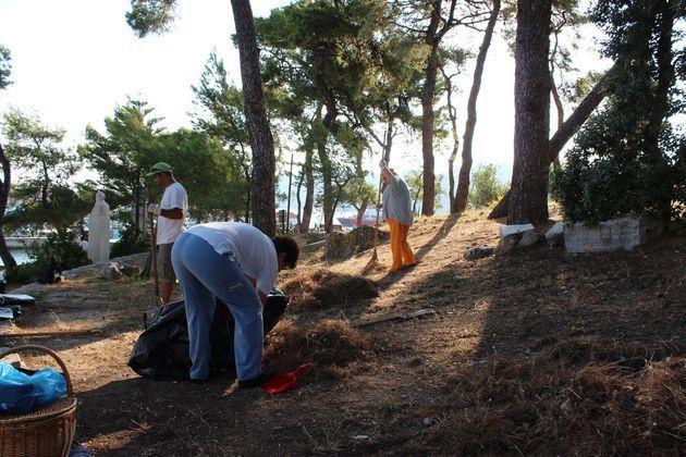 Παράταση του Προγράμματος Κοινωφελούς Χαρακτήρα για την αντιπυρική προστασία των δασών
