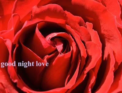 good night , love shayari new11#